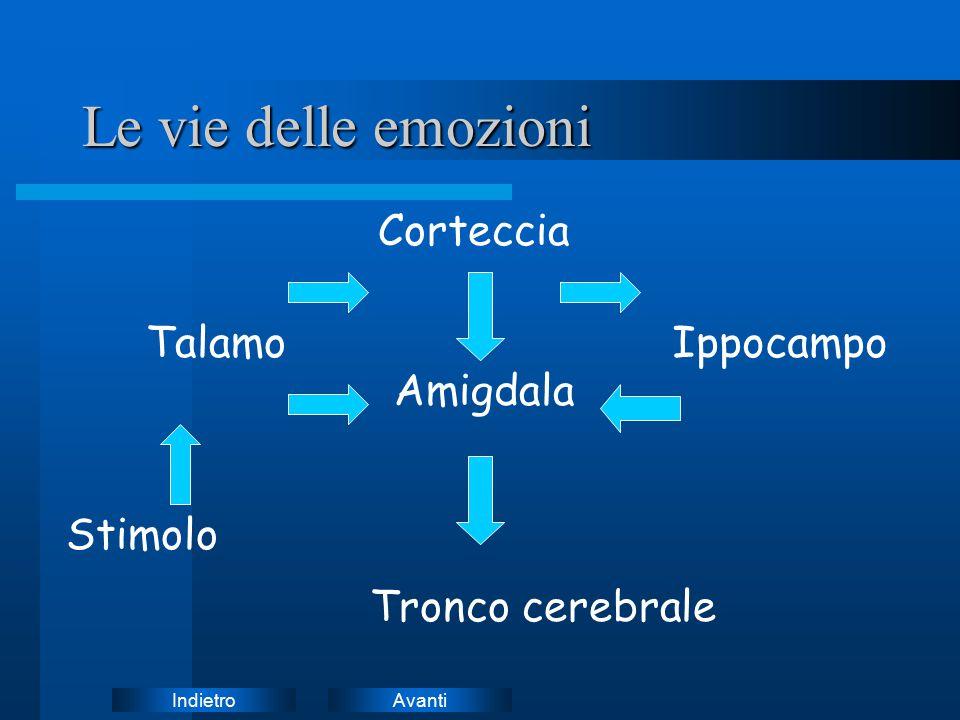 AvantiIndietro Le vie delle emozioni Stimolo Talamo Corteccia Amigdala Ippocampo Tronco cerebrale