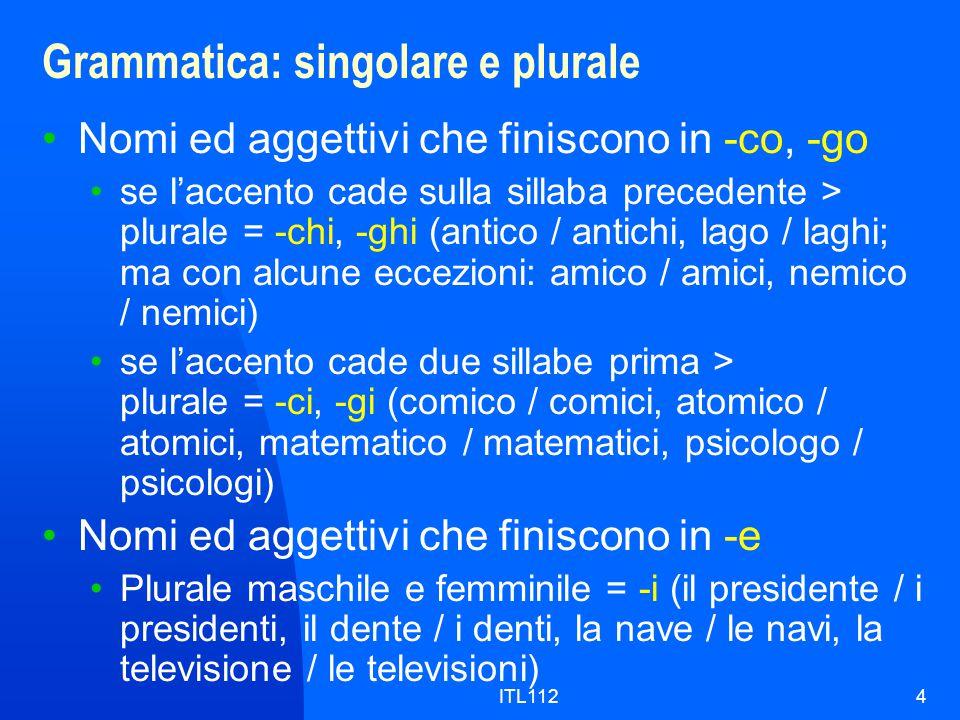 ITL1124 Grammatica: singolare e plurale Nomi ed aggettivi che finiscono in -co, -go se l'accento cade sulla sillaba precedente > plurale = -chi, -ghi (antico / antichi, lago / laghi; ma con alcune eccezioni: amico / amici, nemico / nemici) se l'accento cade due sillabe prima > plurale = -ci, -gi (comico / comici, atomico / atomici, matematico / matematici, psicologo / psicologi) Nomi ed aggettivi che finiscono in -e Plurale maschile e femminile = -i (il presidente / i presidenti, il dente / i denti, la nave / le navi, la televisione / le televisioni)