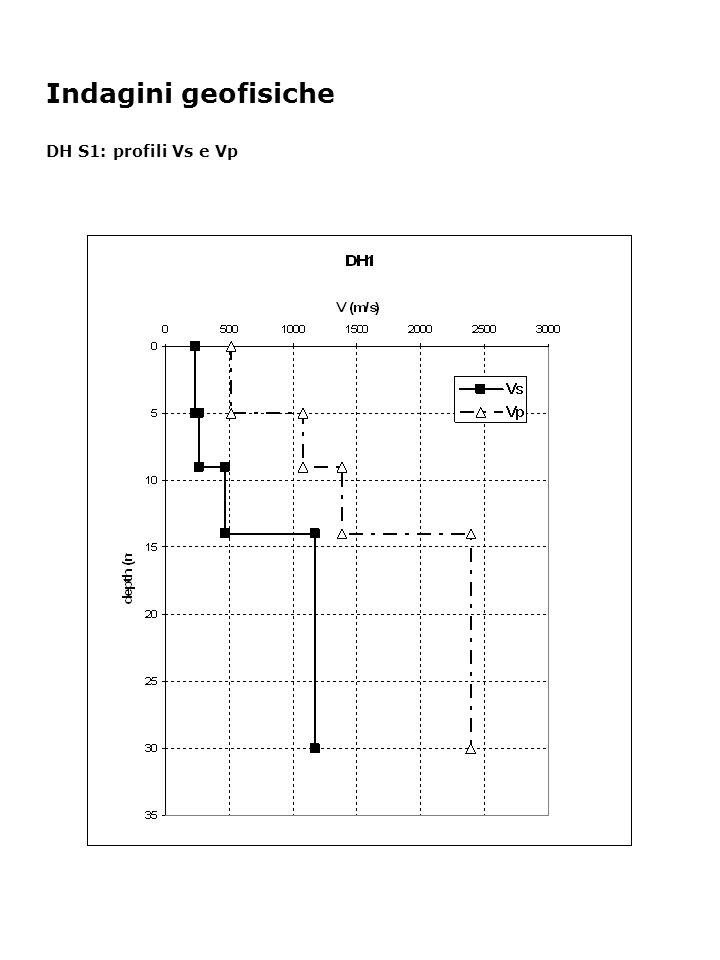 Indagini geofisiche DH S1: profili Vs e Vp