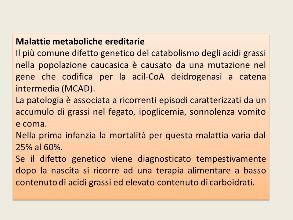 Malattie metaboliche ereditarie Il più comune difetto genetico del catabolismo degli acidi grassi nella popolazione caucasica è causato da una mutazio