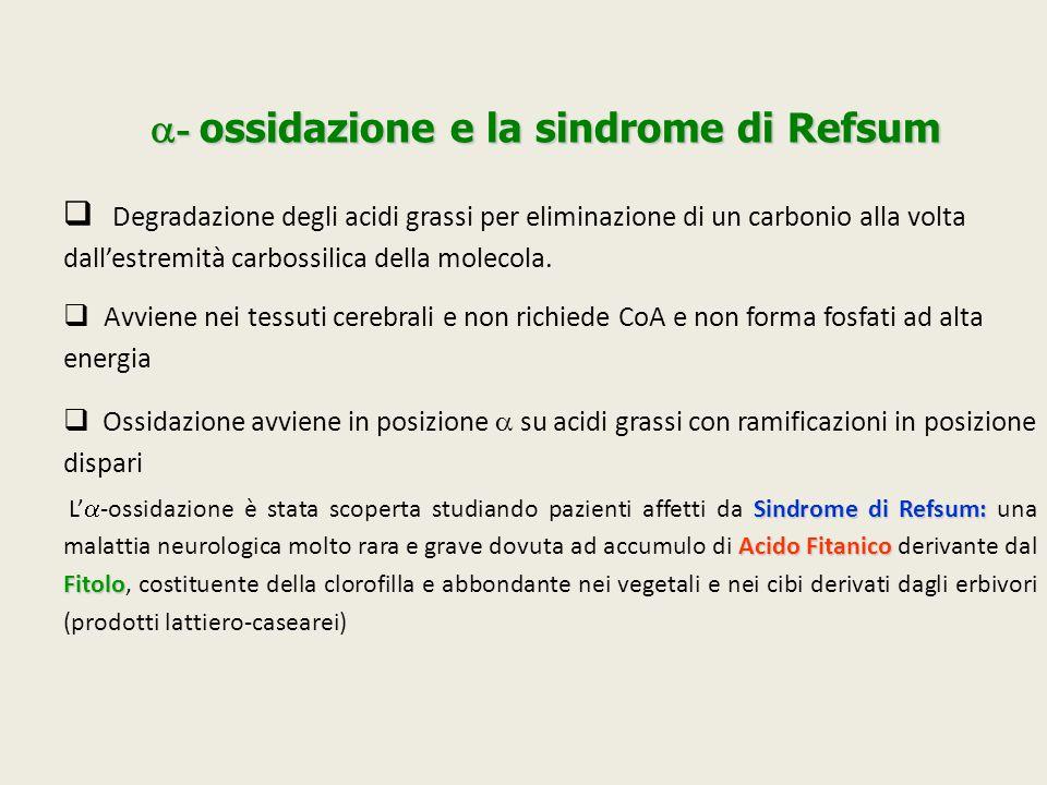  - ossidazione e la sindrome di Refsum  Degradazione degli acidi grassi per eliminazione di un carbonio alla volta dall'estremità carbossilica della