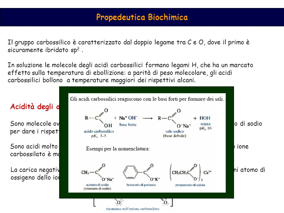 Propedeutica Biochimica Il gruppo carbossilico è caratterizzato dal doppio legame tra C e O, dove il primo è sicuramente ibridato sp 2.
