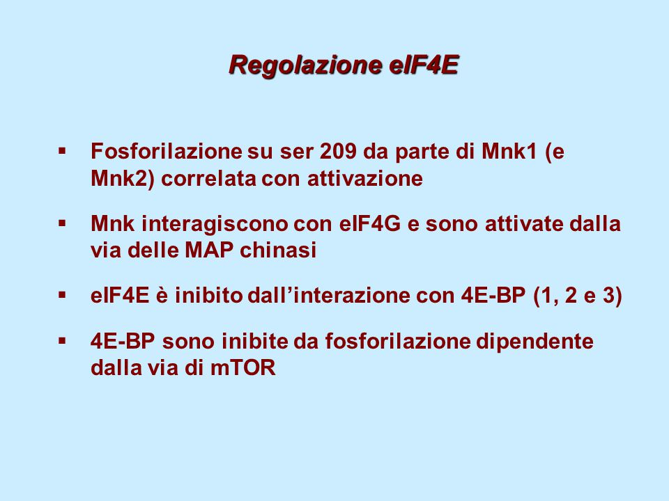 Regolazione eIF4E  Fosforilazione su ser 209 da parte di Mnk1 (e Mnk2) correlata con attivazione  Mnk interagiscono con eIF4G e sono attivate dalla via delle MAP chinasi  eIF4E è inibito dall'interazione con 4E-BP (1, 2 e 3)  4E-BP sono inibite da fosforilazione dipendente dalla via di mTOR