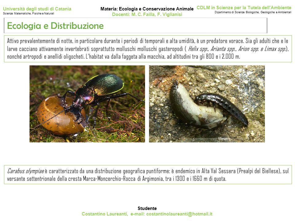 Studente Costantino Laureanti, e-mail: costantinolaureanti@hotmail.it Materia: Ecologia e Conservazione Animale Docenti: M.