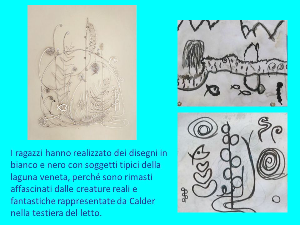 I ragazzi hanno realizzato dei disegni in bianco e nero con soggetti tipici della laguna veneta, perché sono rimasti affascinati dalle creature reali