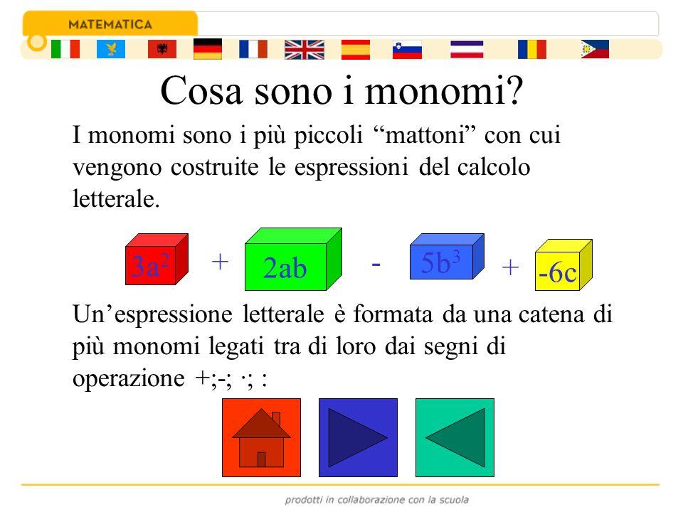 Come si può definire un monomio.