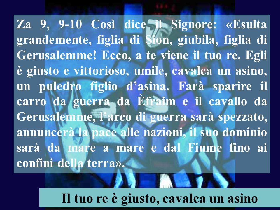 """Anno A Domenica XIV tempo ordinario Domenica XIV tempo ordinario 6 luglio 2014 Musica:""""Alleluia"""" di Martinus 6'15 (Liturgia della Gallia)"""