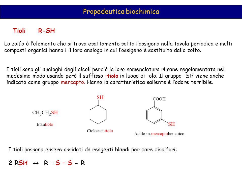 Propedeutica biochimica Tioli R-SH Lo zolfo è l'elemento che si trova esattamente sotto l'ossigeno nella tavola periodica e molti composti organici ha
