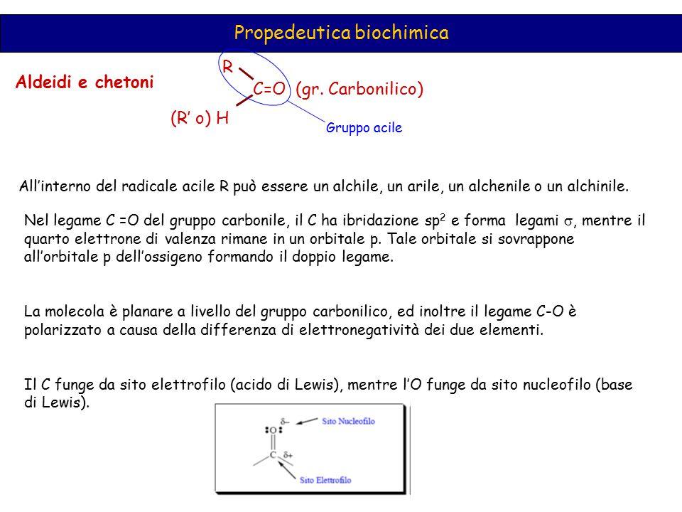 Propedeutica biochimica Aldeidi e chetoni C=O (gr. Carbonilico) R (R' o) H Gruppo acile All'interno del radicale acile R può essere un alchile, un ari