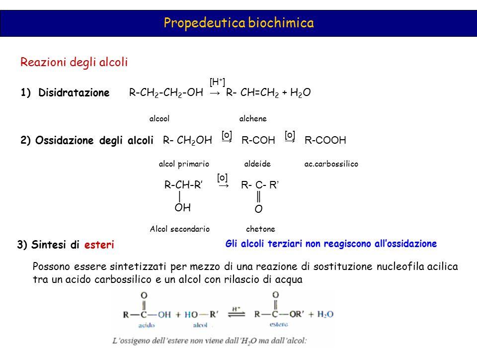 Propedeutica biochimica Reazioni degli alcoli 1)Disidratazione R-CH 2 -CH 2 -OH → R- CH=CH 2 + H 2 O alcool alchene 2) Ossidazione degli alcoli R- CH