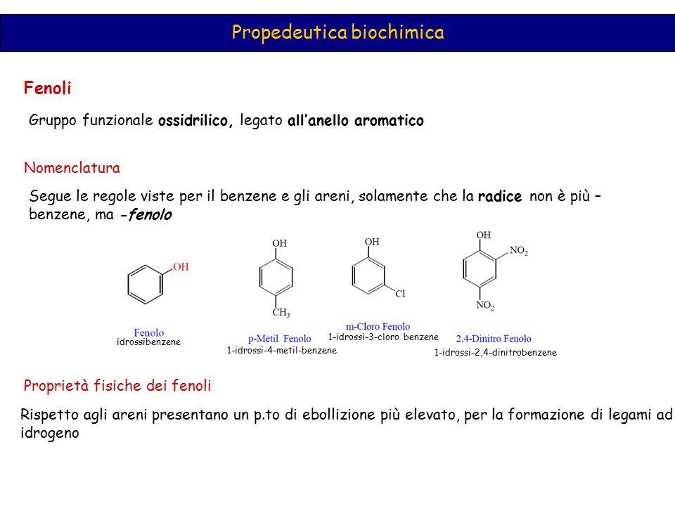 Propedeutica biochimica Fenoli Gruppo funzionale ossidrilico, legato all'anello aromatico Nomenclatura Segue le regole viste per il benzene e gli aren