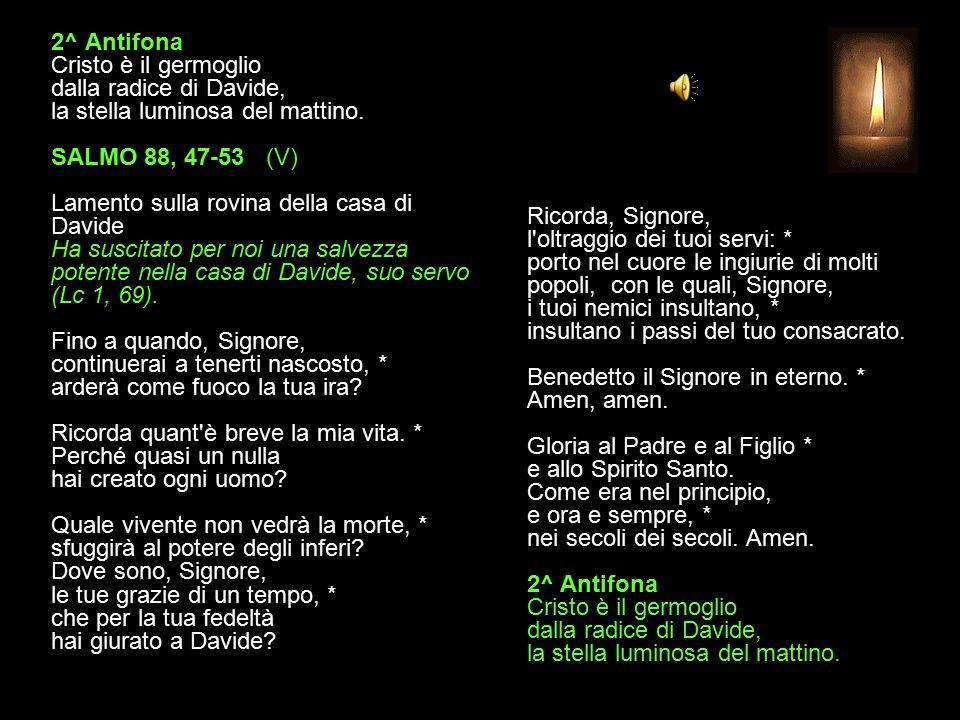 2^ Antifona Cristo è il germoglio dalla radice di Davide, la stella luminosa del mattino.