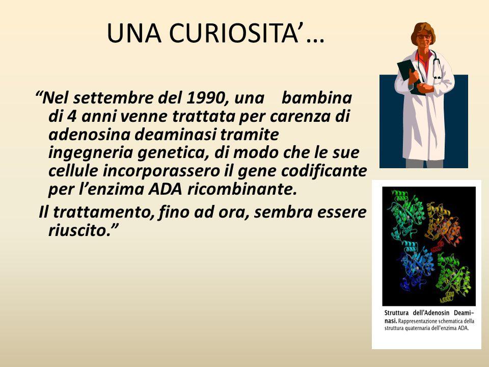 """UNA CURIOSITA'… """"Nel settembre del 1990, una bambina di 4 anni venne trattata per carenza di adenosina deaminasi tramite ingegneria genetica, di modo"""