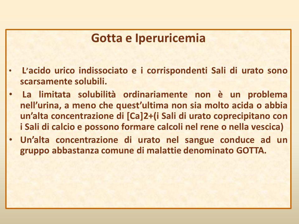 Gotta e Iperuricemia L ' acido urico indissociato e i corrispondenti Sali di urato sono scarsamente solubili. La limitata solubilità ordinariamente no