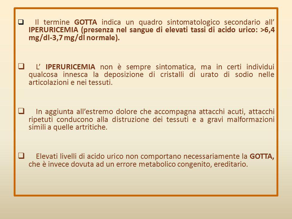  Il termine GOTTA indica un quadro sintomatologico secondario all' IPERURICEMIA (presenza nel sangue di elevati tassi di acido urico: >6,4 mg/dl-3,7