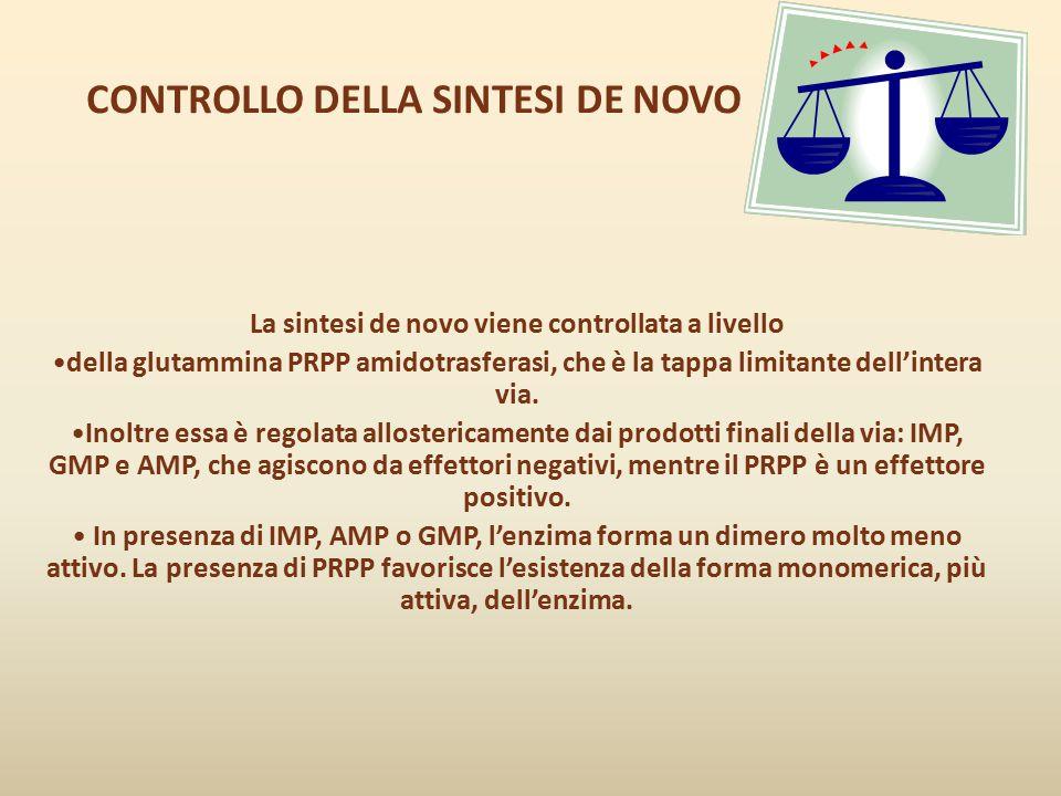 CONTROLLO DELLA SINTESI DE NOVO La sintesi de novo viene controllata a livello della glutammina PRPP amidotrasferasi, che è la tappa limitante dell'in
