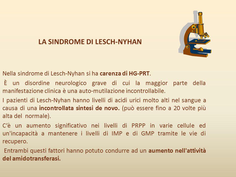 LA SINDROME DI LESCH-NYHAN Nella sindrome di Lesch-Nyhan si ha carenza di HG-PRT. È un disordine neurologico grave di cui la maggior parte della manif