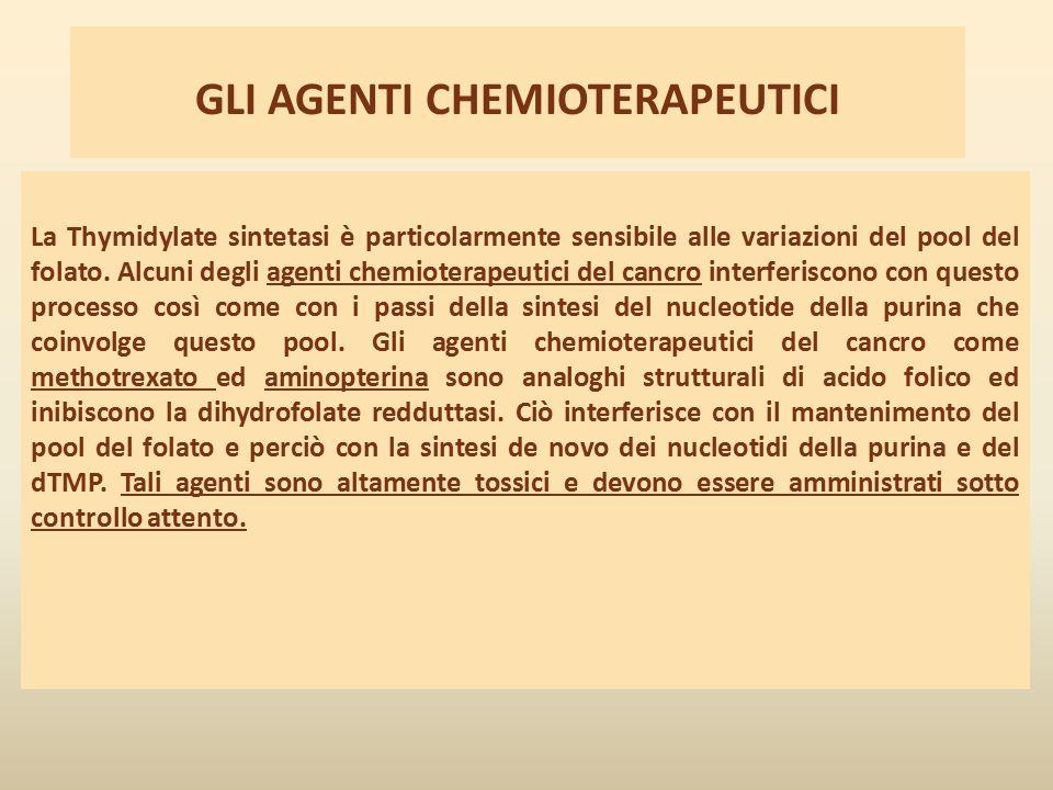 GLI AGENTI CHEMIOTERAPEUTICI La Thymidylate sintetasi è particolarmente sensibile alle variazioni del pool del folato. Alcuni degli agenti chemioterap