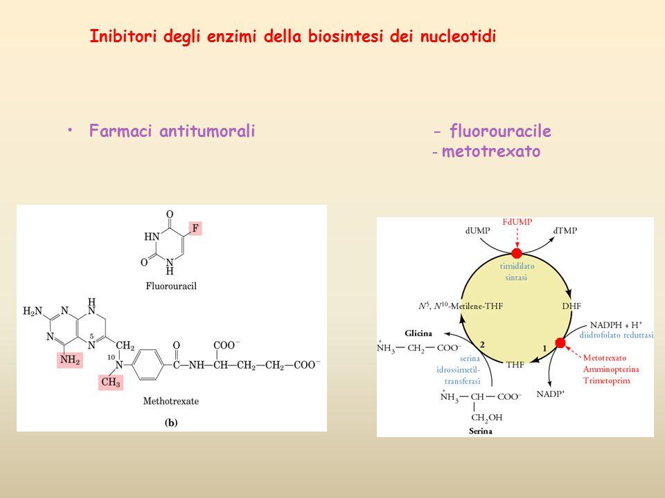 Inibitori degli enzimi della biosintesi dei nucleotidi Farmaci antitumorali- fluorouracile - metotrexato