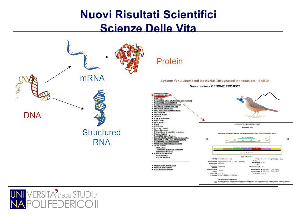 DNA Protein Structured RNA mRNA Nuovi Risultati Scientifici Scienze Delle Vita