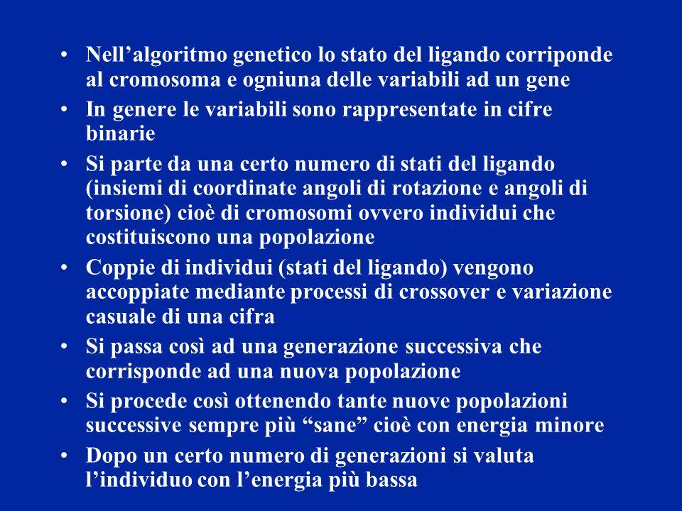 Nell'algoritmo genetico lo stato del ligando corriponde al cromosoma e ogniuna delle variabili ad un gene In genere le variabili sono rappresentate in