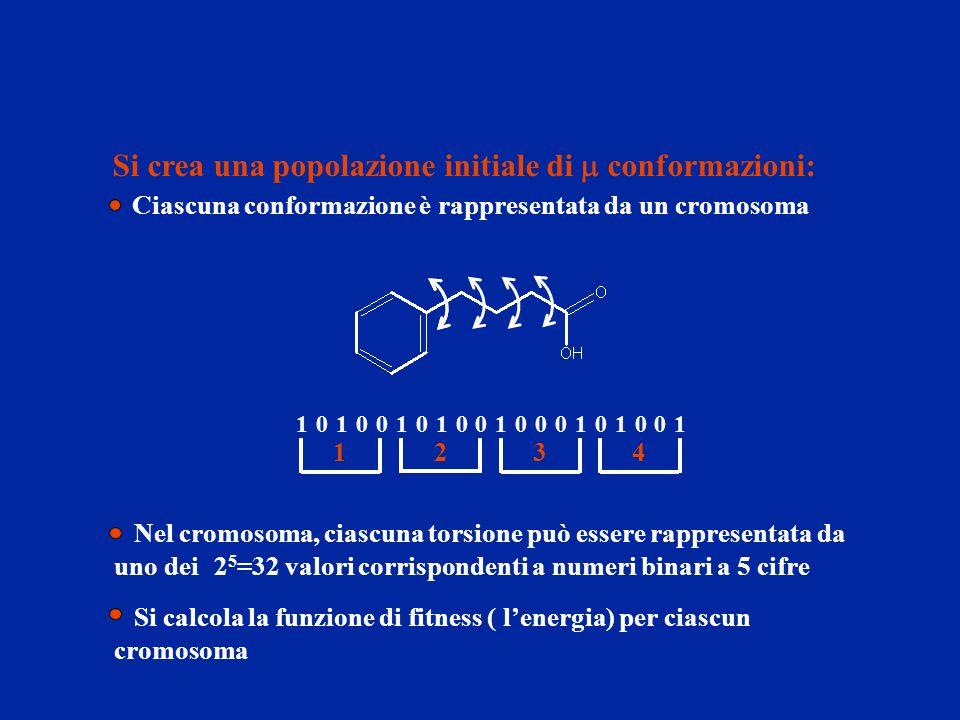 Si crea una popolazione initiale di  conformazioni: Ciascuna conformazione è rappresentata da un cromosoma 10101101000101001000 1234 Si calcola la fu
