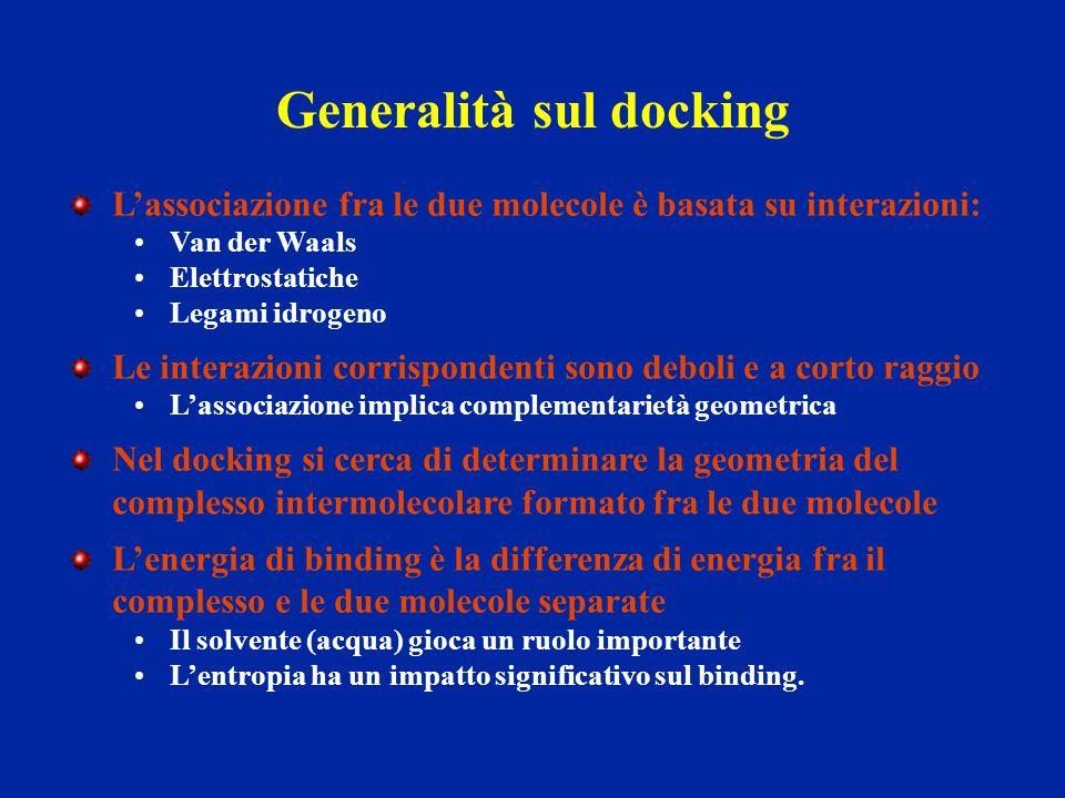 Generalità sul docking L'associazione fra le due molecole è basata su interazioni: Van der Waals Elettrostatiche Legami idrogeno Le interazioni corris