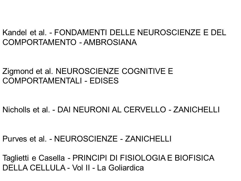 Kandel et al. - FONDAMENTI DELLE NEUROSCIENZE E DEL COMPORTAMENTO - AMBROSIANA Zigmond et al. NEUROSCIENZE COGNITIVE E COMPORTAMENTALI - EDISES Nichol
