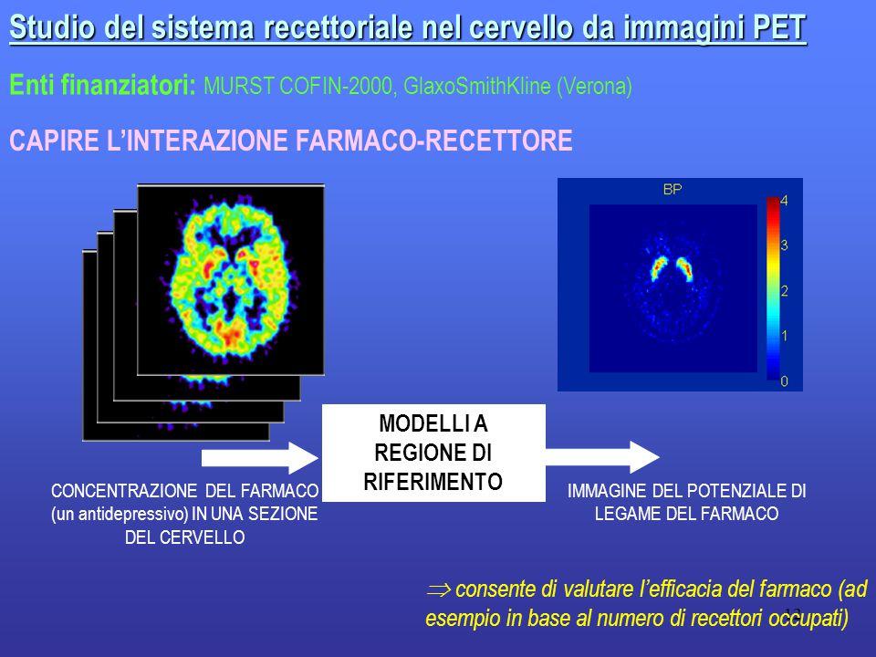 12 Studio del sistema recettoriale nel cervello da immagini PET Enti finanziatori: MURST COFIN-2000, GlaxoSmithKline (Verona) CAPIRE L'INTERAZIONE FARMACO-RECETTORE CONCENTRAZIONE DEL FARMACO (un antidepressivo) IN UNA SEZIONE DEL CERVELLO IMMAGINE DEL POTENZIALE DI LEGAME DEL FARMACO MODELLI A REGIONE DI RIFERIMENTO  consente di valutare l'efficacia del farmaco (ad esempio in base al numero di recettori occupati)