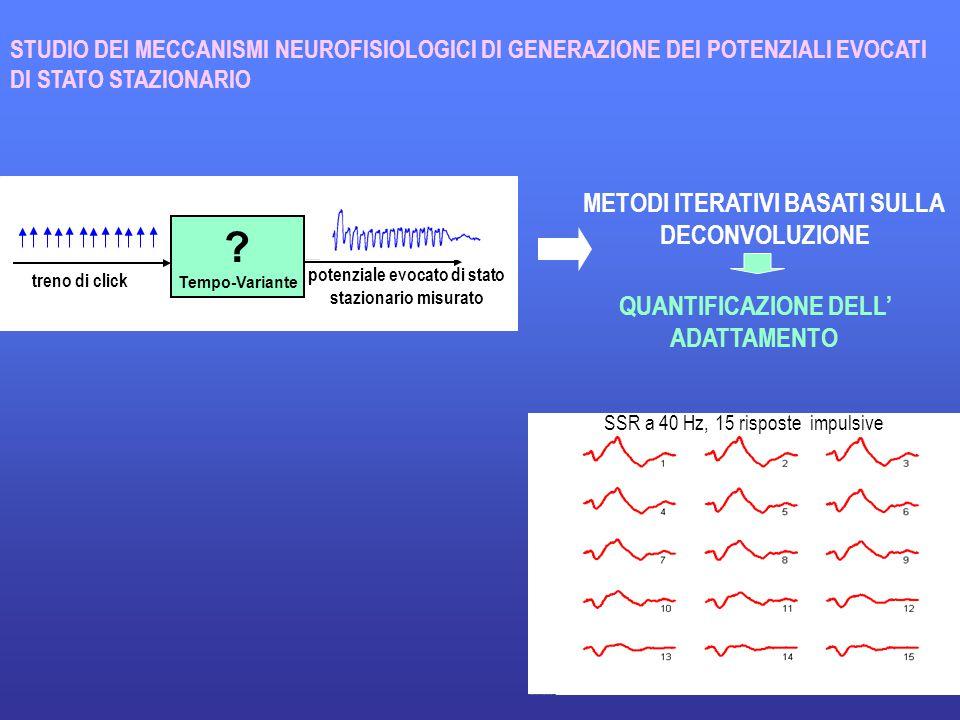 19 QUANTIFICAZIONE DELL' ADATTAMENTO STUDIO DEI MECCANISMI NEUROFISIOLOGICI DI GENERAZIONE DEI POTENZIALI EVOCATI DI STATO STAZIONARIO .