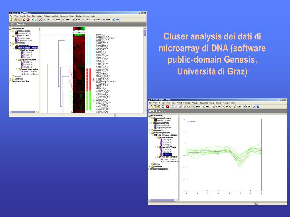 21 Cluser analysis dei dati di microarray di DNA (software public-domain Genesis, Università di Graz)