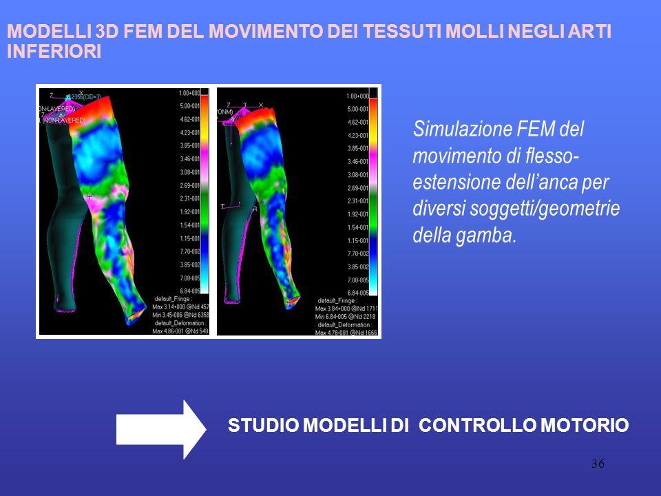 36 Simulazione FEM del movimento di flesso- estensione dell'anca per diversi soggetti/geometrie della gamba.