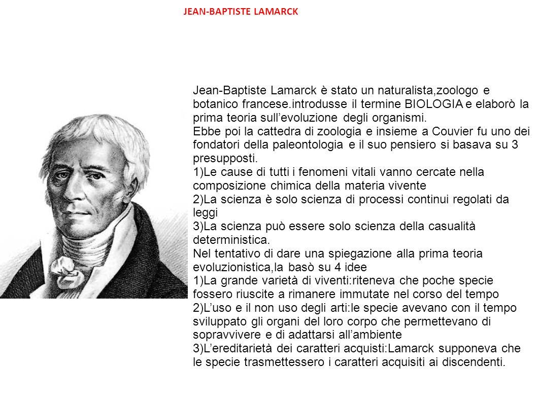 JEAN-BAPTISTE LAMARCK Jean-Baptiste Lamarck è stato un naturalista,zoologo e botanico francese.introdusse il termine BIOLOGIA e elaborò la prima teori