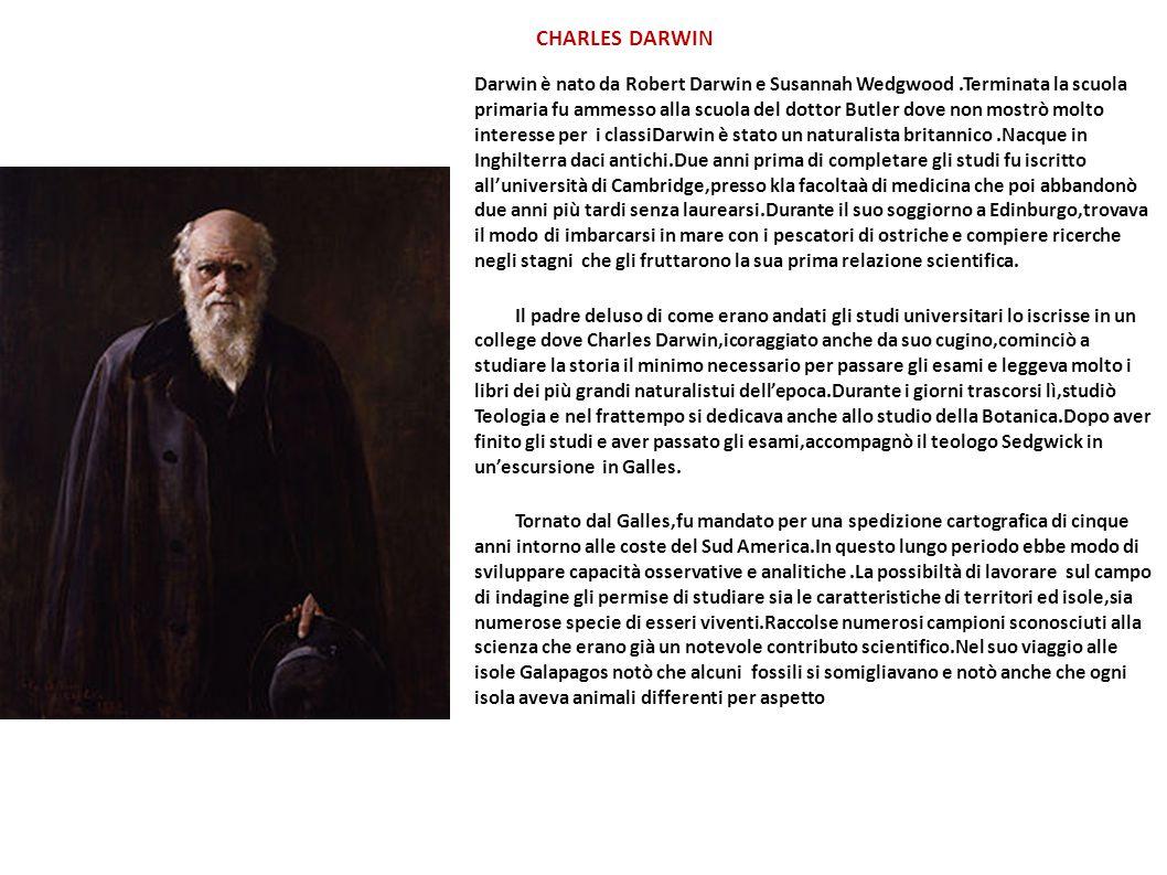 CHARLES DARWIN Darwin è nato da Robert Darwin e Susannah Wedgwood.Terminata la scuola primaria fu ammesso alla scuola del dottor Butler dove non mostr