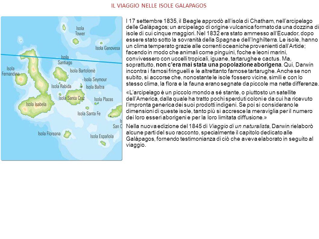 IL VIAGGIO NELLE ISOLE GALAPAGOS l 17 settembre 1835, il Beagle approdò all'isola di Chatham, nell'arcipelago delle Galápagos; un arcipelago di origin