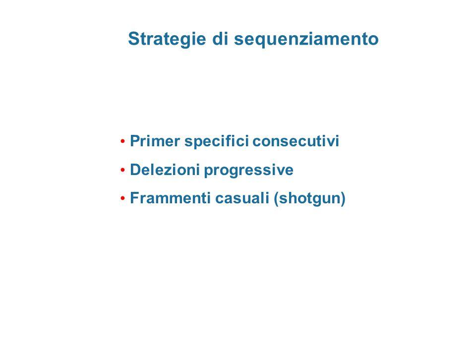 Strategie di sequenziamento Primer specifici consecutivi Delezioni progressive Frammenti casuali (shotgun)