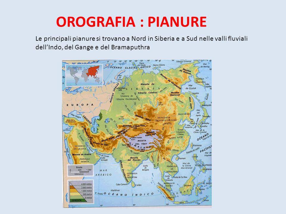OROGRAFIA : PIANURE Le principali pianure si trovano a Nord in Siberia e a Sud nelle valli fluviali dell'Indo, del Gange e del Bramaputhra
