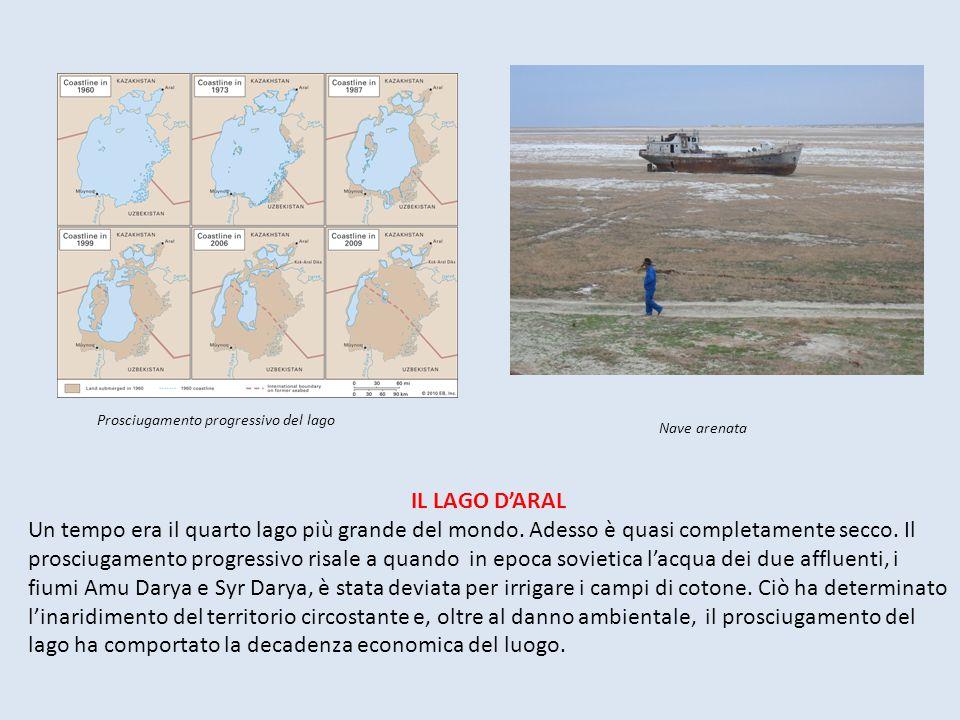 IL LAGO D'ARAL Un tempo era il quarto lago più grande del mondo. Adesso è quasi completamente secco. Il prosciugamento progressivo risale a quando in