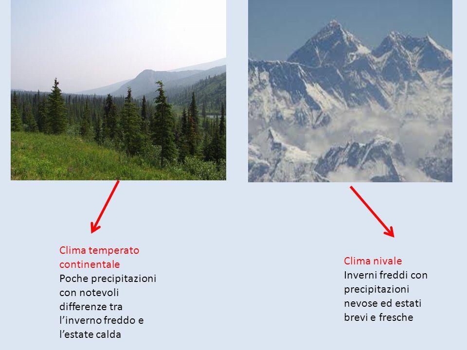 Clima temperato continentale Poche precipitazioni con notevoli differenze tra l'inverno freddo e l'estate calda Clima nivale Inverni freddi con precip