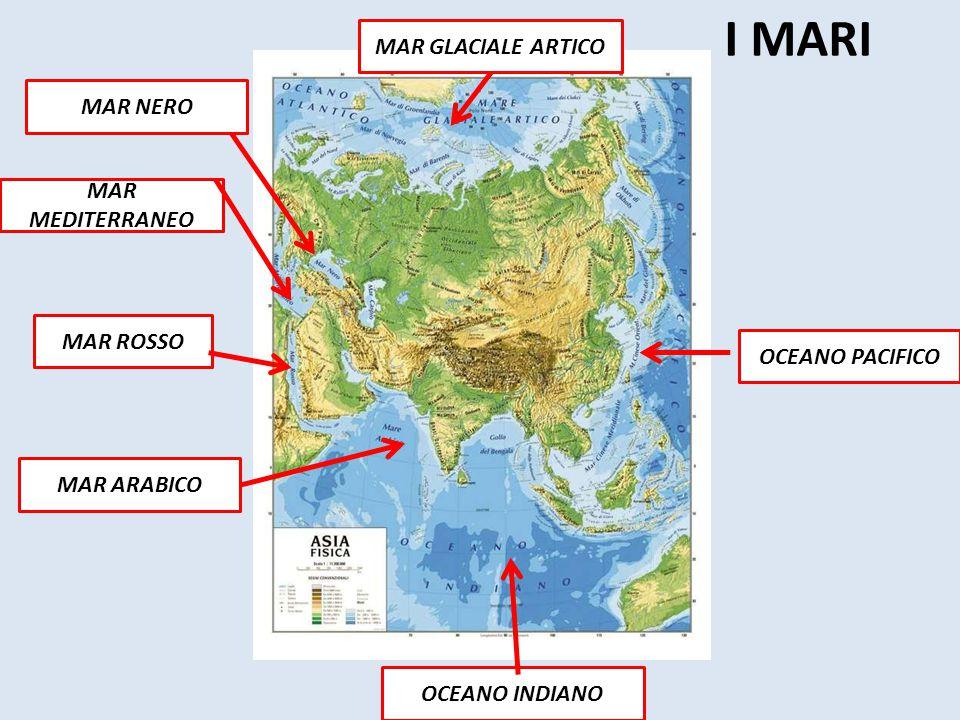 I MARI OCEANO INDIANO OCEANO PACIFICO MAR GLACIALE ARTICO MAR MEDITERRANEO MAR ROSSO MAR ARABICO MAR NERO