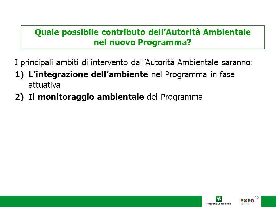 18 I principali ambiti di intervento dall'Autorità Ambientale saranno: 1)L'integrazione dell'ambiente nel Programma in fase attuativa 2)Il monitoraggio ambientale del Programma Quale possibile contributo dell'Autorità Ambientale nel nuovo Programma?