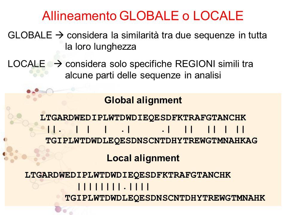 Allineamento GLOBALE o LOCALE GLOBALE  considera la similarità tra due sequenze in tutta la loro lunghezza LOCALE  considera solo specifiche REGIONI simili tra alcune parti delle sequenze in analisi Global alignment LTGARDWEDIPLWTDWDIEQESDFKTRAFGTANCHK   .
