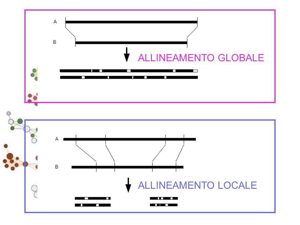 Esempio di matrice di sostituzione ARNK A5-2 R-7 3 N--70 K---6 Nonostante K e R siano due amminoacidi diversi, hanno uno score positivo.