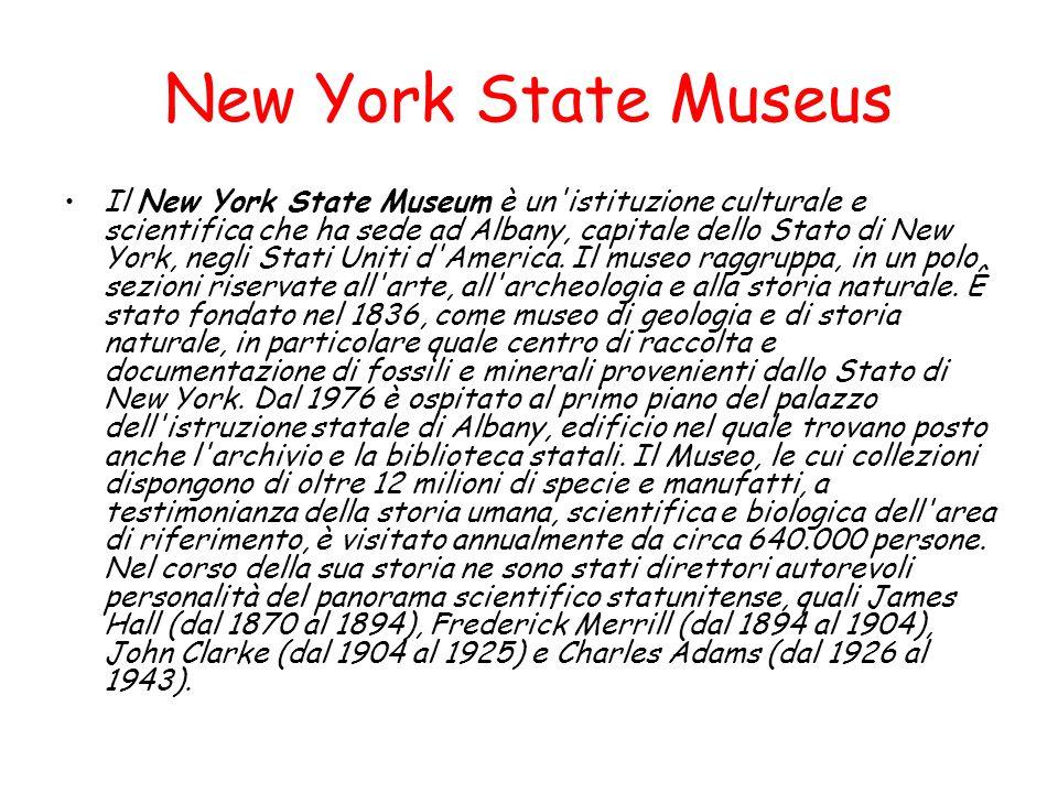 New York State Museus Il New York State Museum è un'istituzione culturale e scientifica che ha sede ad Albany, capitale dello Stato di New York, negli