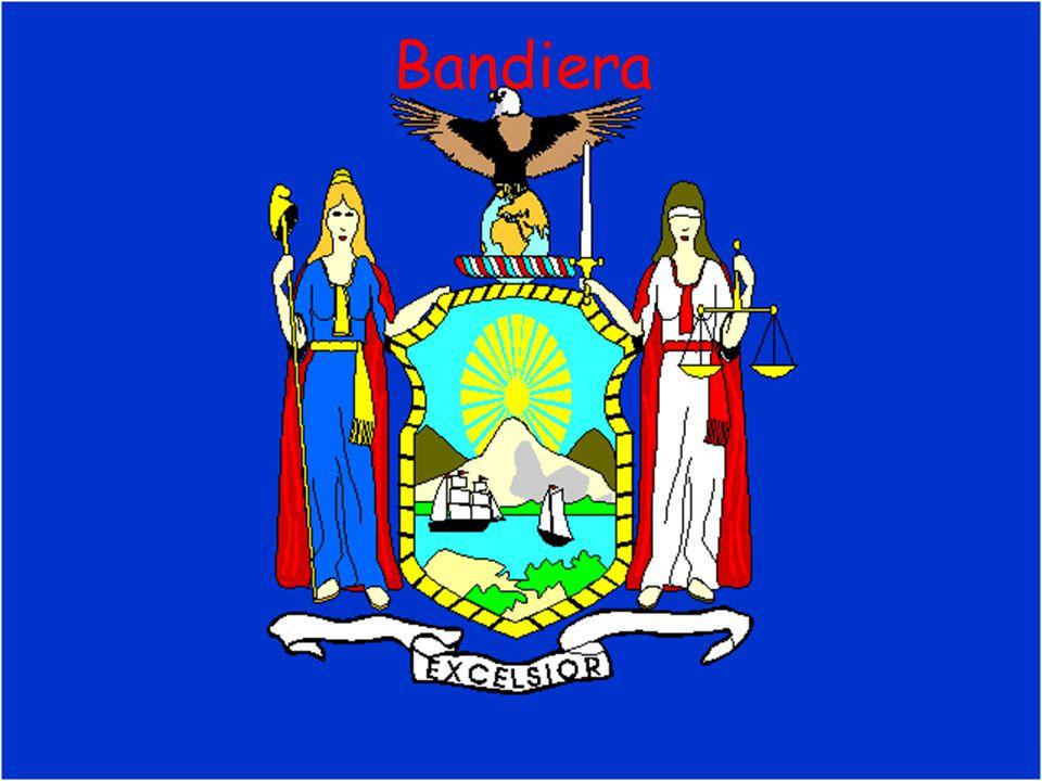 Aspetto fisico New York è costituita da 5 circoscrizioni (chiamate boroughs).