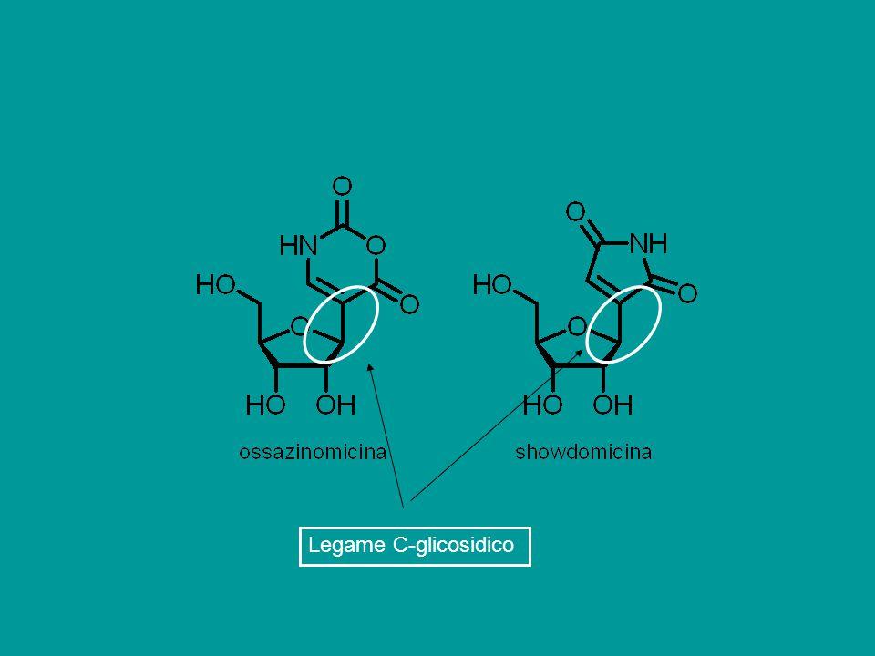 Legame C-glicosidico