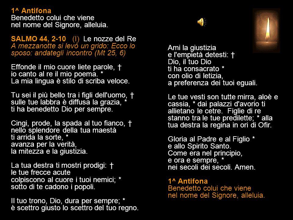 1^ Antifona Benedetto colui che viene nel nome del Signore, alleluia.