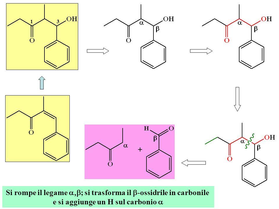 Si rompe il legame  ; si trasforma il  -ossidrile in carbonile e si aggiunge un H sul carbonio  13