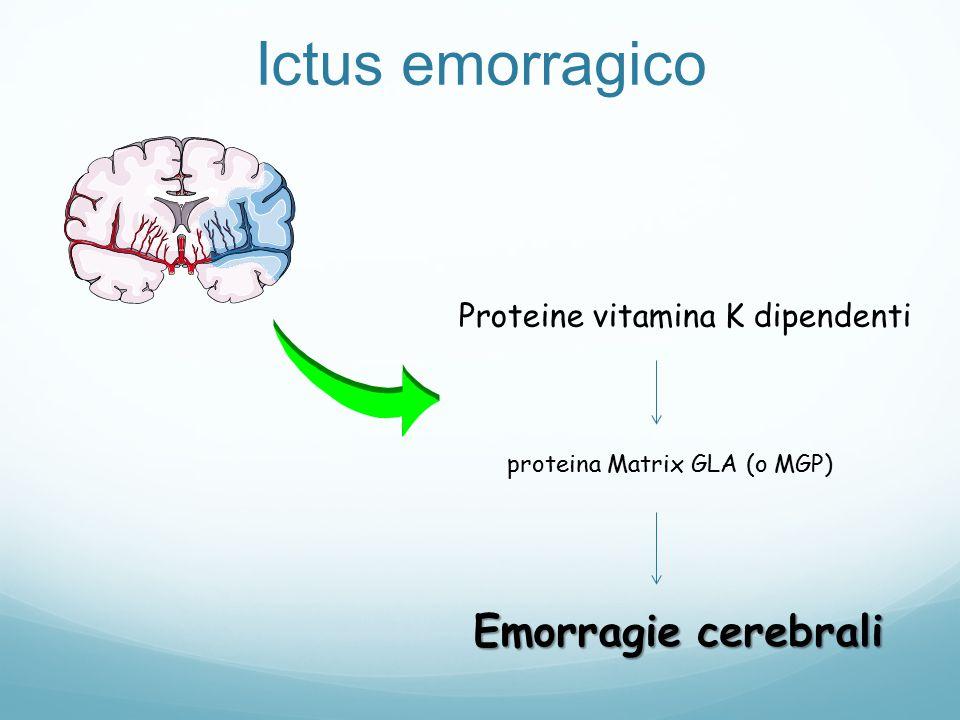 Proteine vitamina K dipendenti proteina Matrix GLA (o MGP) Emorragie cerebrali Ictus emorragico