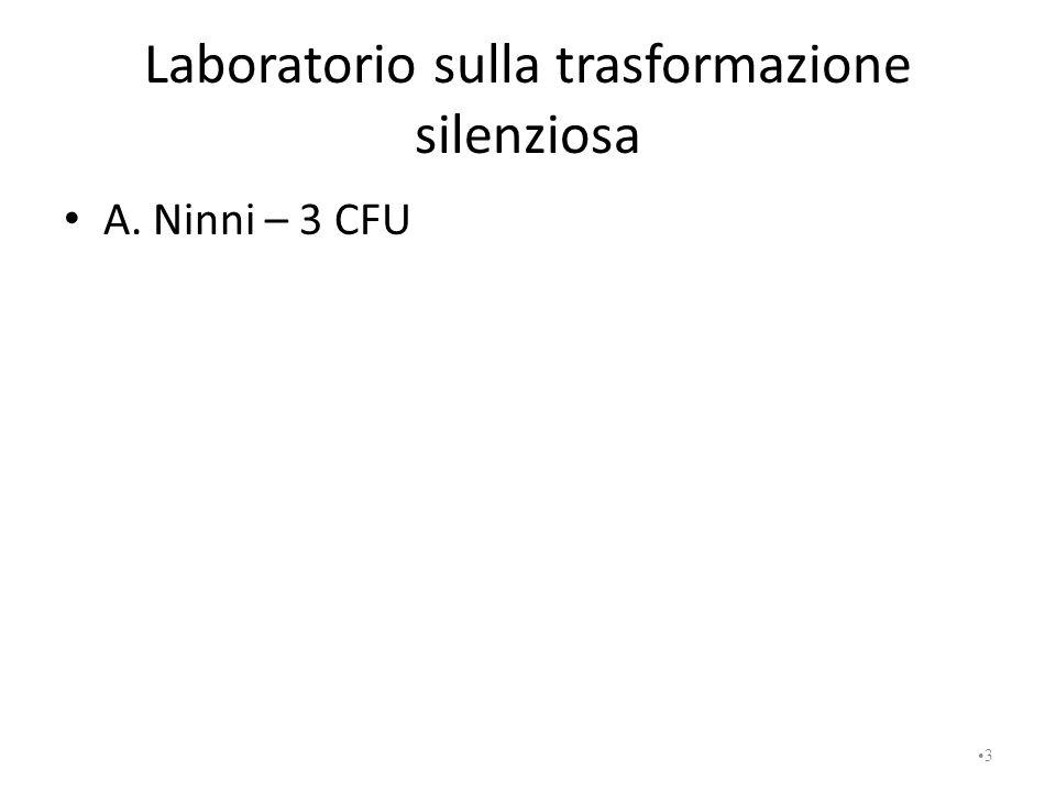Laboratorio sulla trasformazione silenziosa A. Ninni – 3 CFU 3